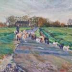 schapen bij tjamsweersterweg 40x60 cm olieverf op doek